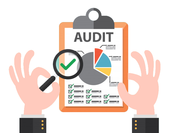 Virtual Audit Services